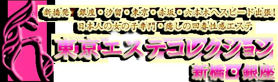 東京エステコレクション新橋・銀座